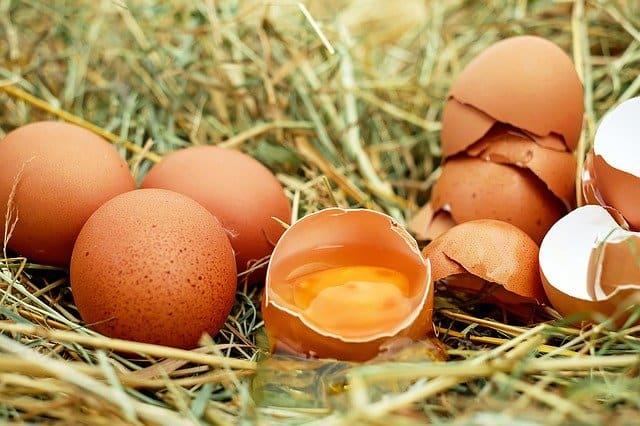 卵の殻は濡れた手で